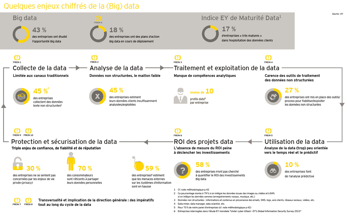 freins-big-data-ey