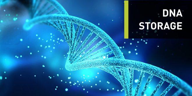 L'ADN synthétique représente le futur du stockage de données