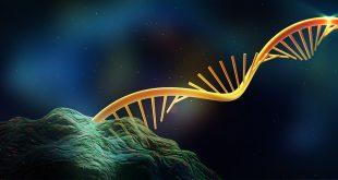L'UCLA a découvert une nouvelle méthode d'analyse des isoformes pour lutter contre le cancer