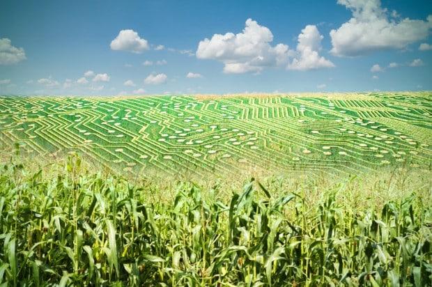 big_data_agriculture