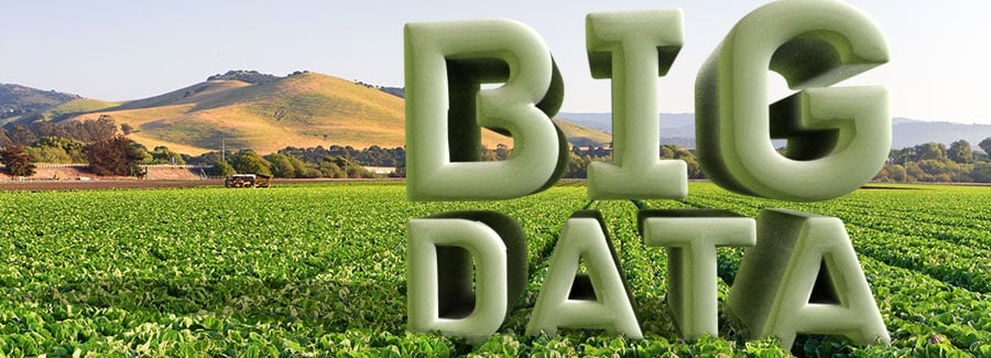 big-data champ agriculture