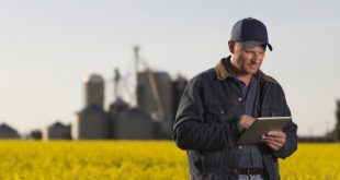 agriculture big data graines