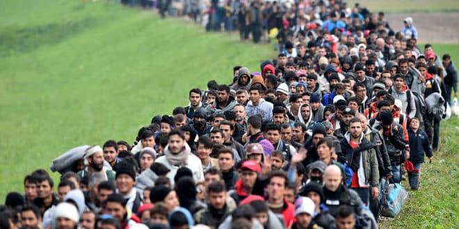 migrants crise big data réfugiés