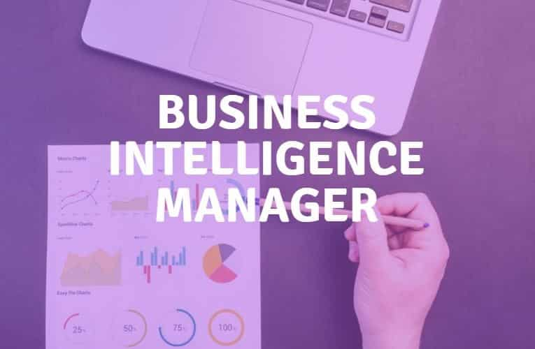 business intelligence manager   r u00f4le  comp u00e9tences