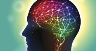 cognitive search définition