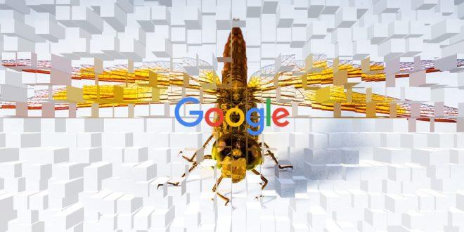 google dragonfly révolte