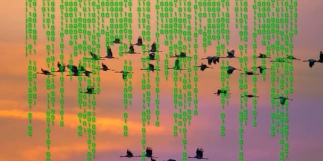 migration de données meilleurs outils