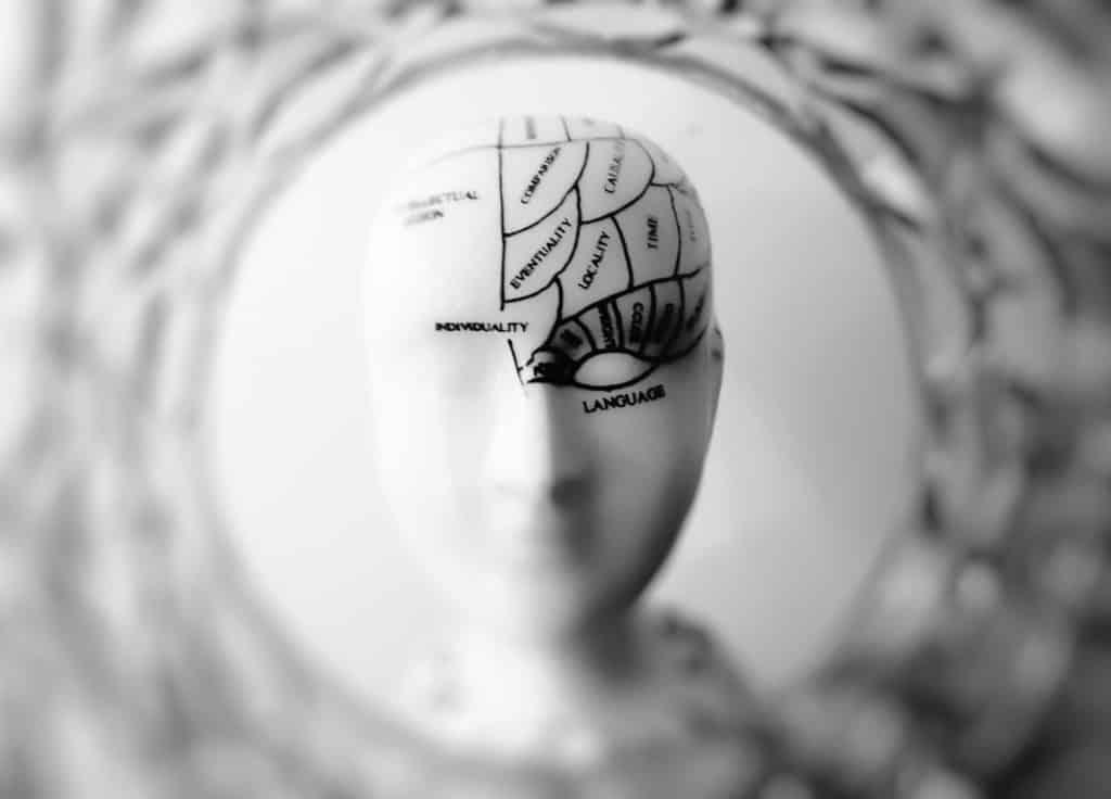 scanner cerveau