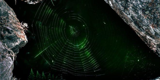 dark web données vente