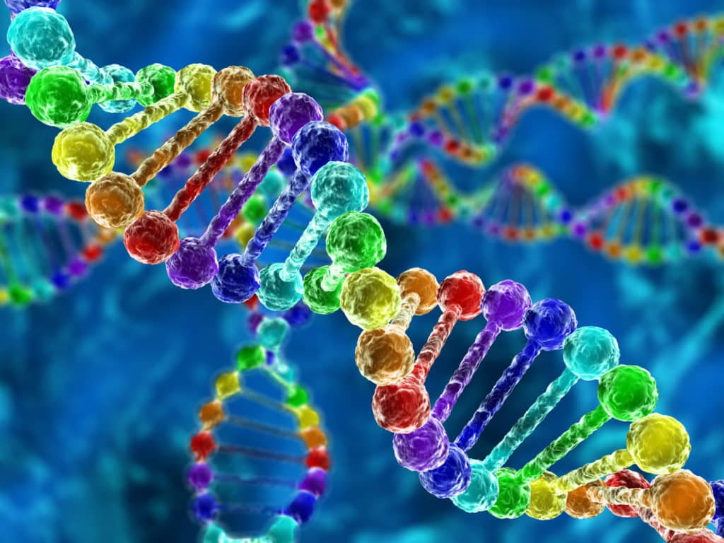 ibm génétique cancer