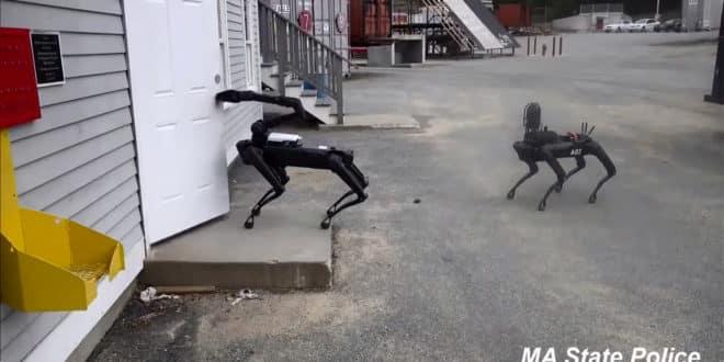 spot robot massachussets police