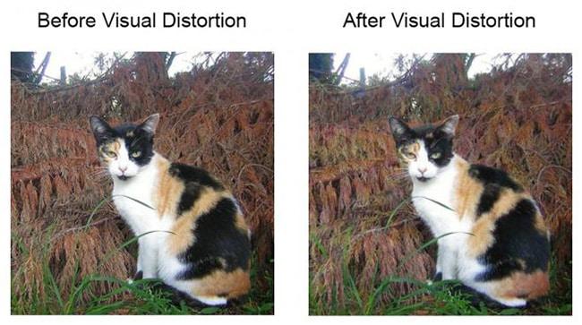 reconnaissance faciale photos technique