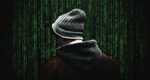 cybersécurité dark web données